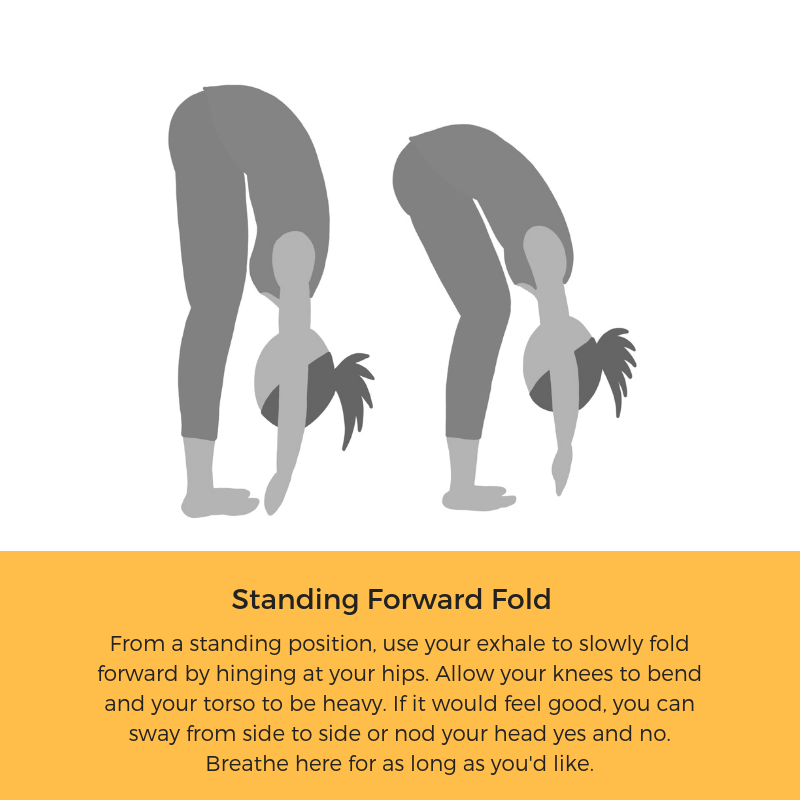 Standing Forward Fold.png