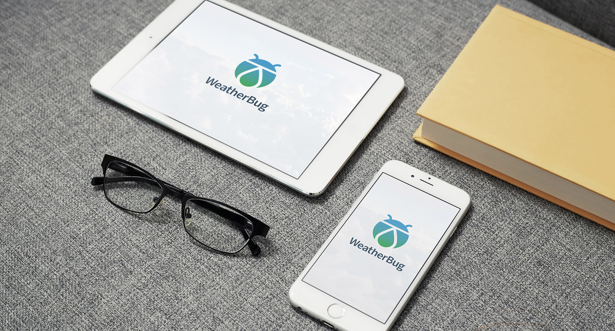 wb-branding-proposal-4.jpg