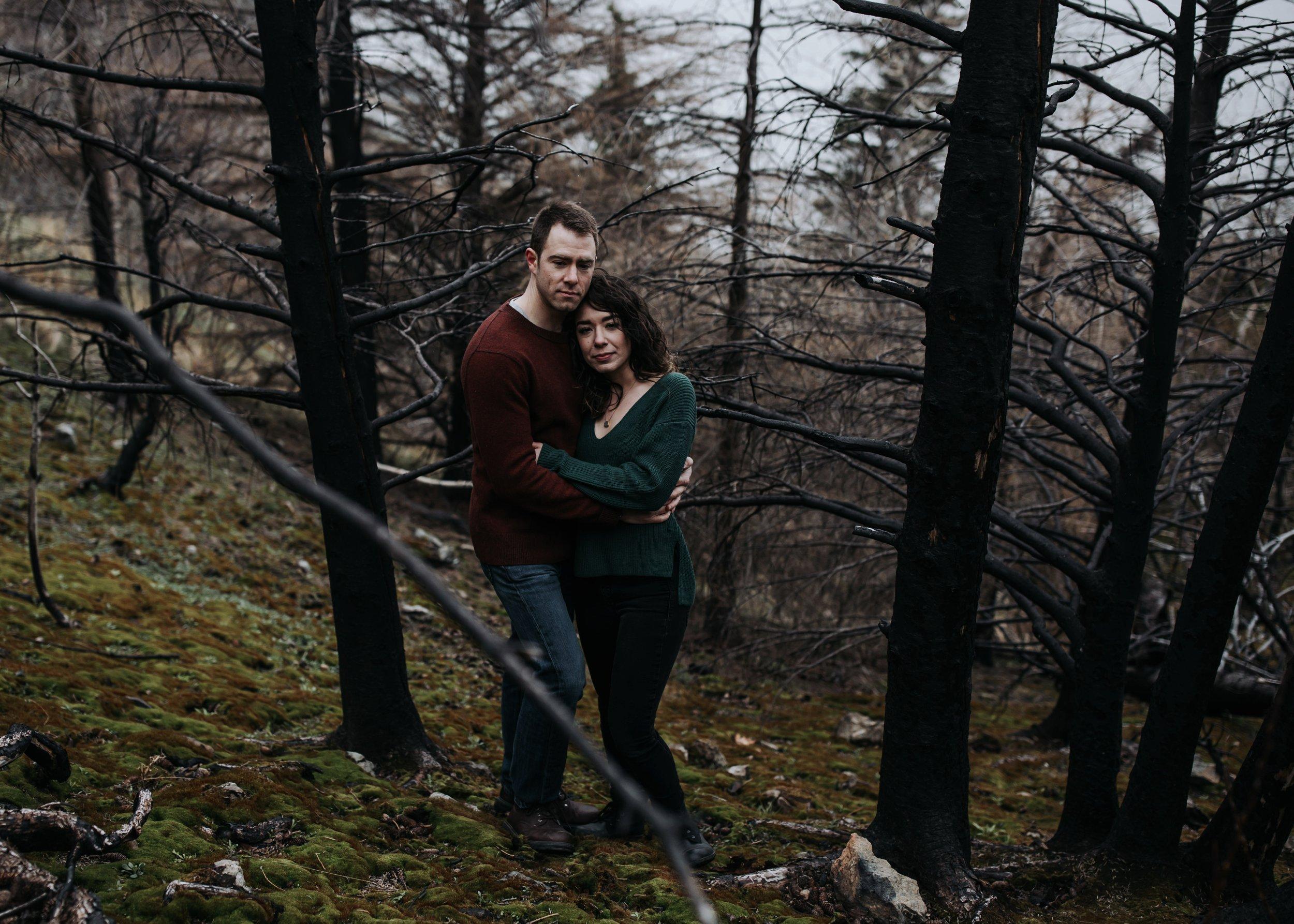 forest fire in alaska engagement
