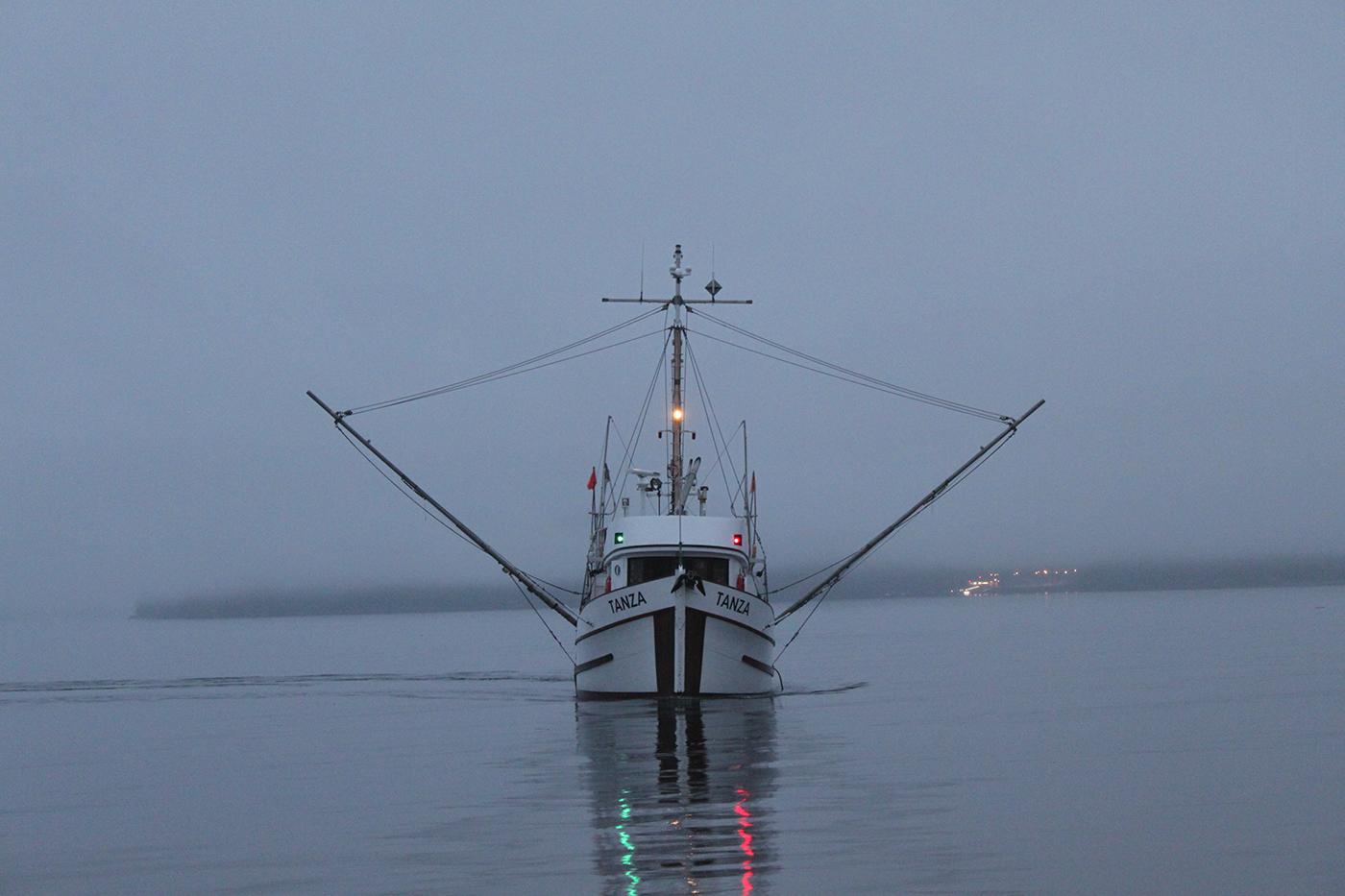 Wild-pacific-halibut-harvesting-2.JPG