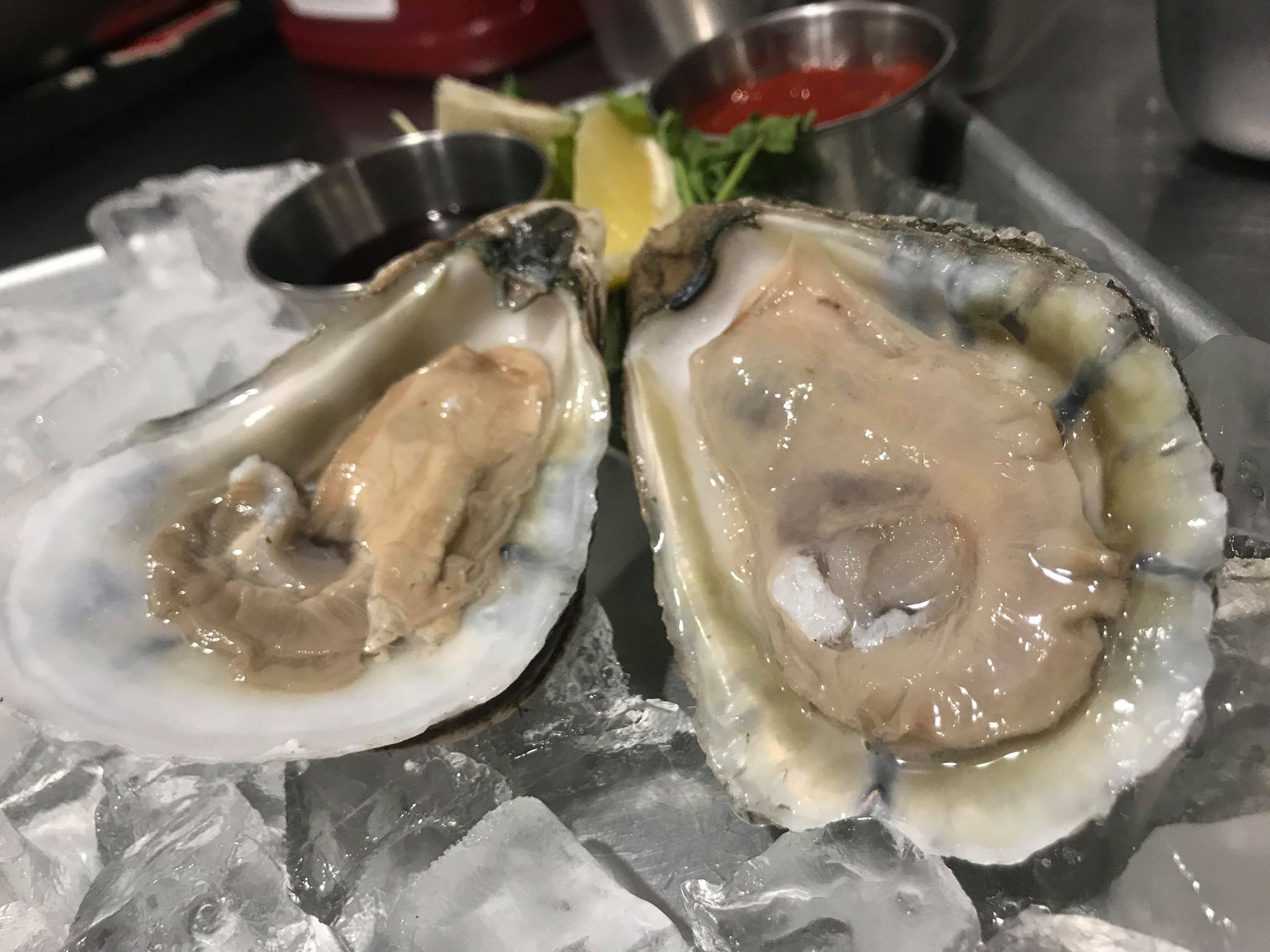 SALT WATER THURSDAY - • $1 Freshly Shucked Oysters & Clams• Chef's Seafood Specials• Irish Happy Hour 5:30-8pm. $5 Guinness, Harp & Smithwick's• Enda Keegan Live• Karaoke/Open Mic 9pm
