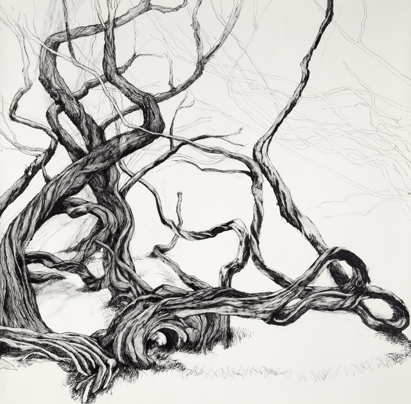 'Darkness and Light',  2012, graphite on Arches paper, 150x150cm