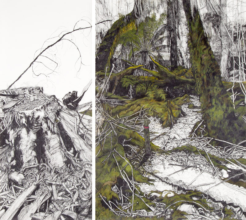 Destruction, Styx Valley,  2012, graphite and coloured pencil on Somerset paper,170x170cm, (diptych)