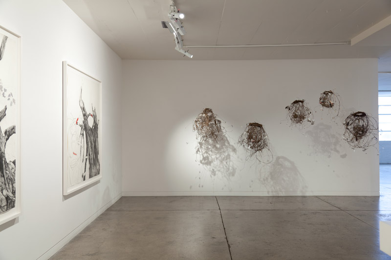 Arcadia, exhibition space