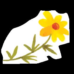 yellowflower2.png