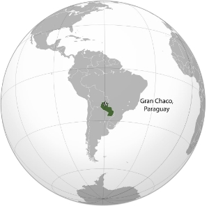 Paraguay_(orthographic_projection)_GranChaco.jpg