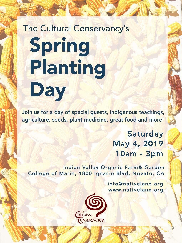 spring planting.jpg