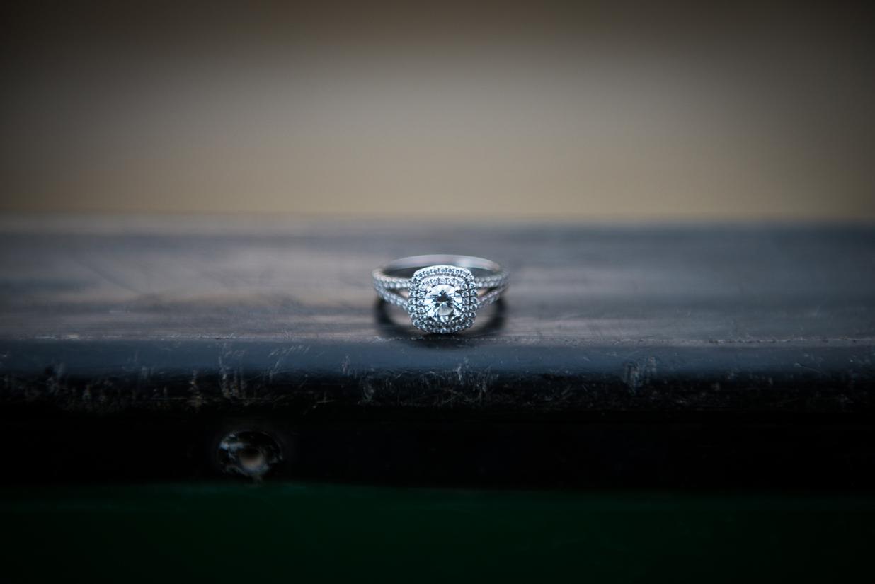 brittney-rodney-engagement-pictures-birmingham-alabama (43).jpg