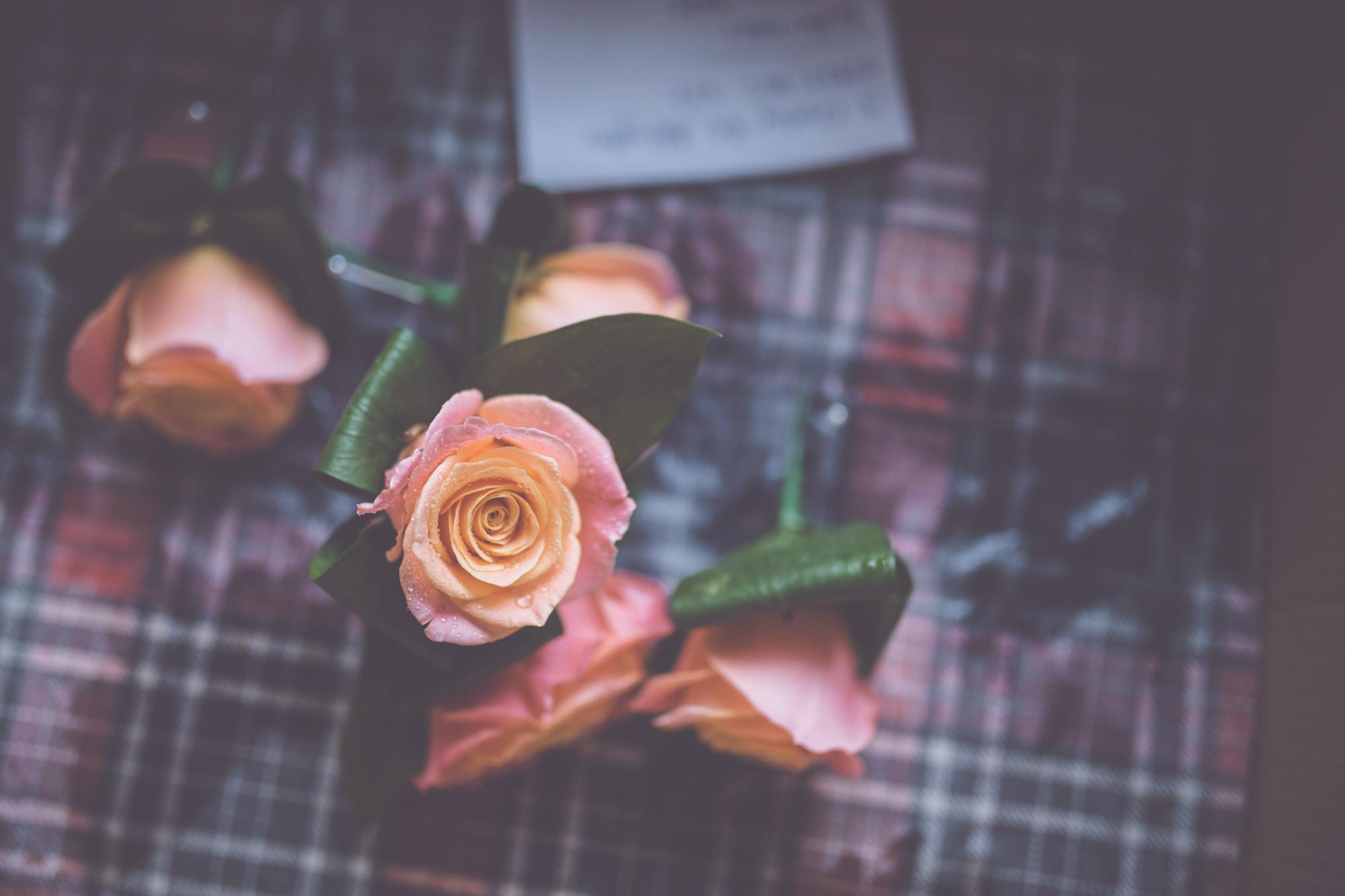 SUSY+DILWYN WEDDING HIGH-49.jpg