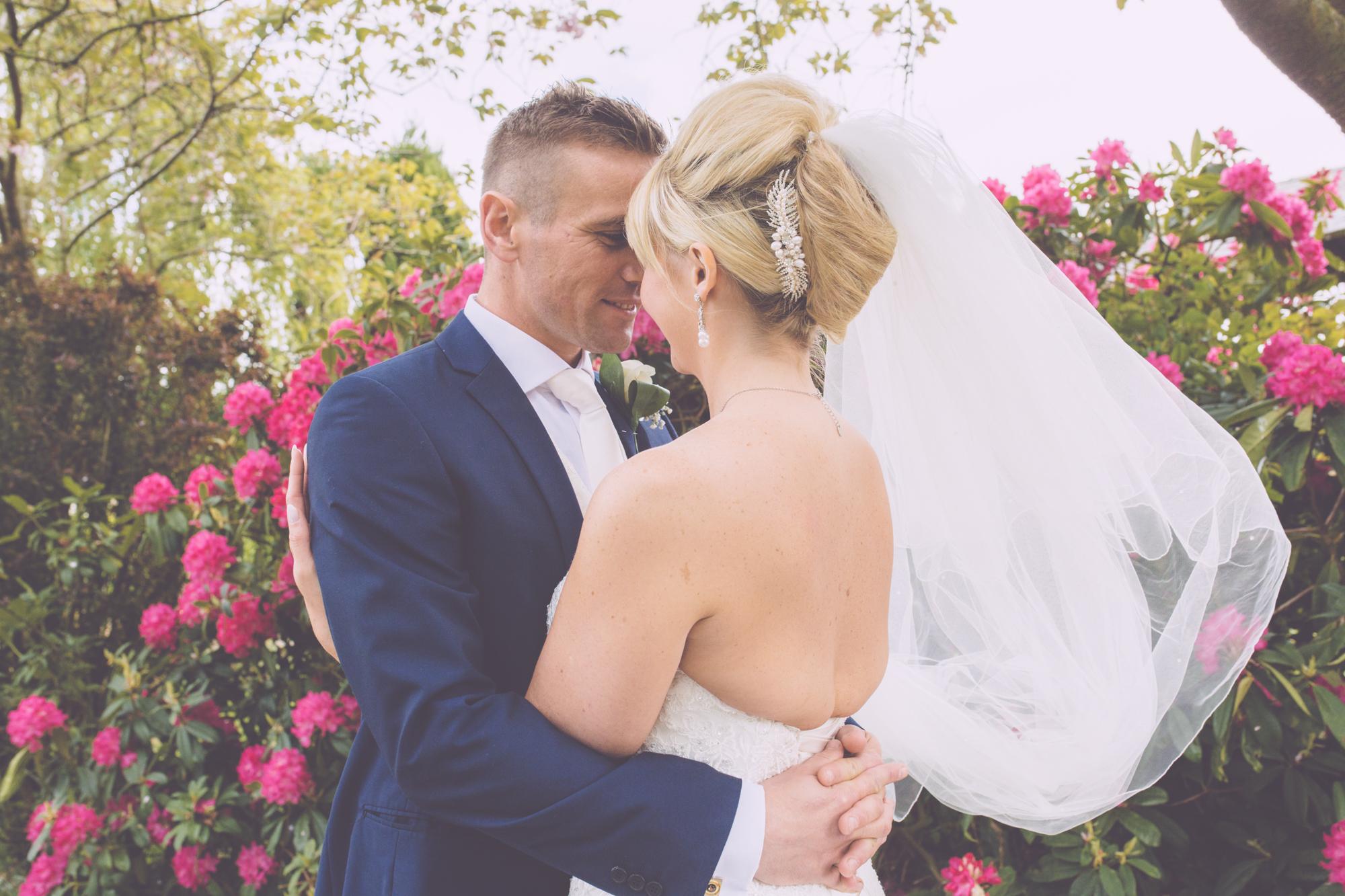 SUSY+DILWYN WEDDING HIGH-244.jpg