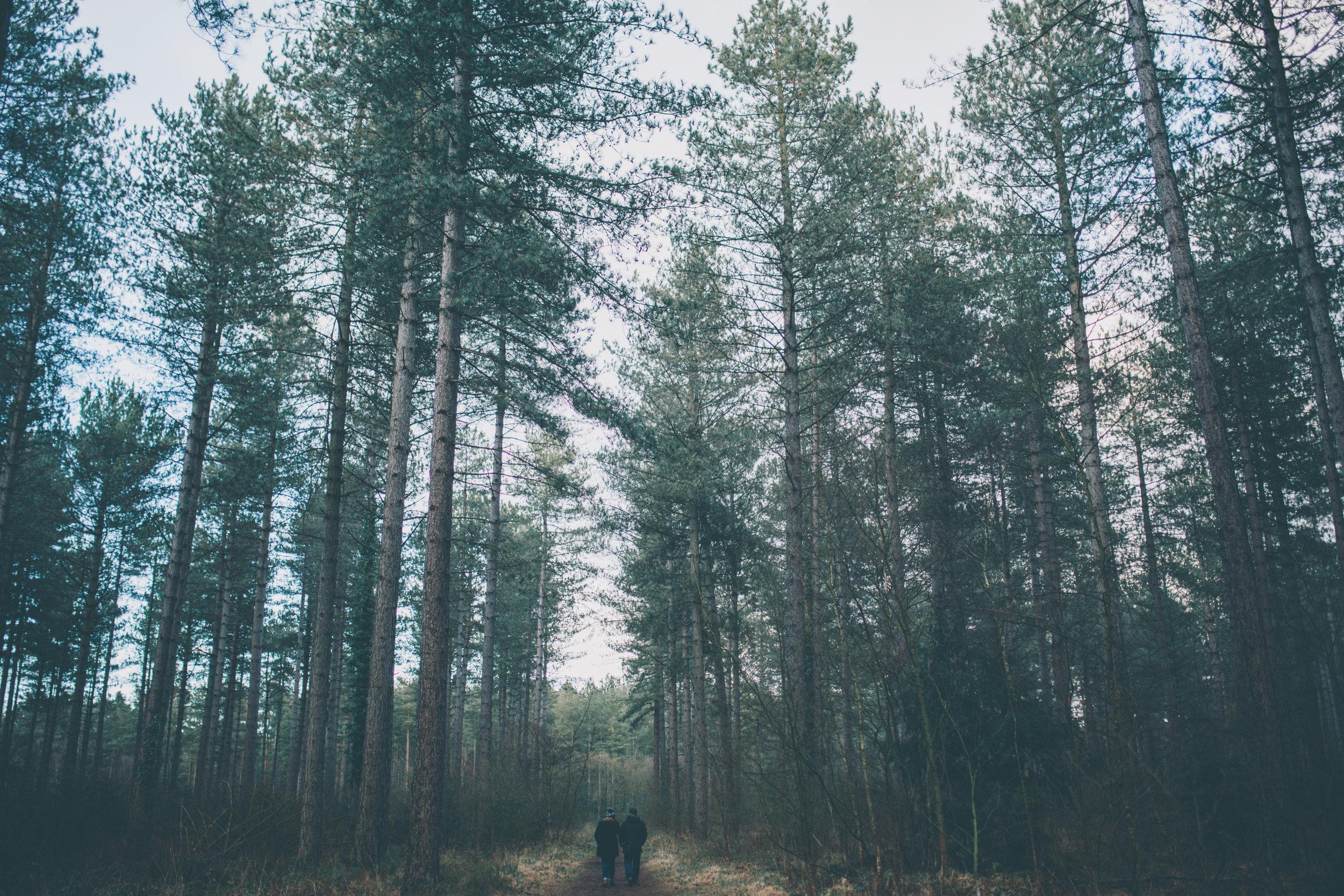 LEE+MEL NEW FOREST PRE-SHOOT-82.jpg