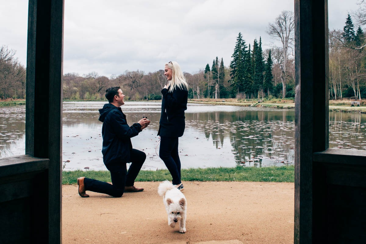 Emmie + Luke Proposal Shoot Windsor Great Park NaomiJanePhotography-2.jpg