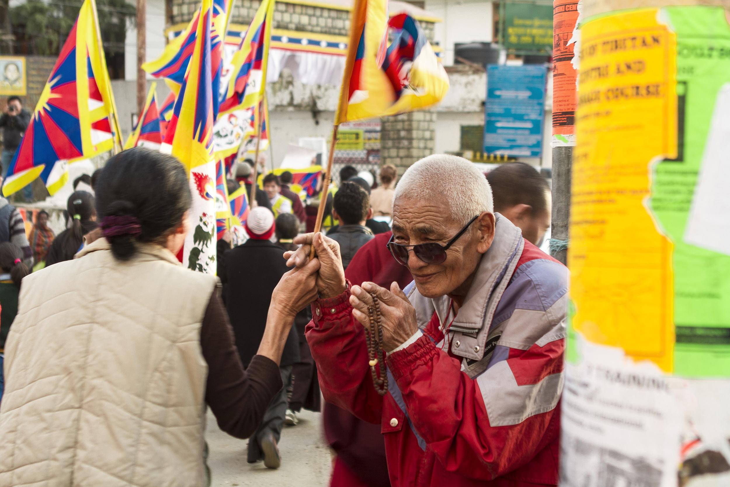 8 November, 2012 - McLeod Ganj   An old Tibetan nun pauses in a sea of Tibetan flags as marchers enter the gates of the Tsuglagkhang.