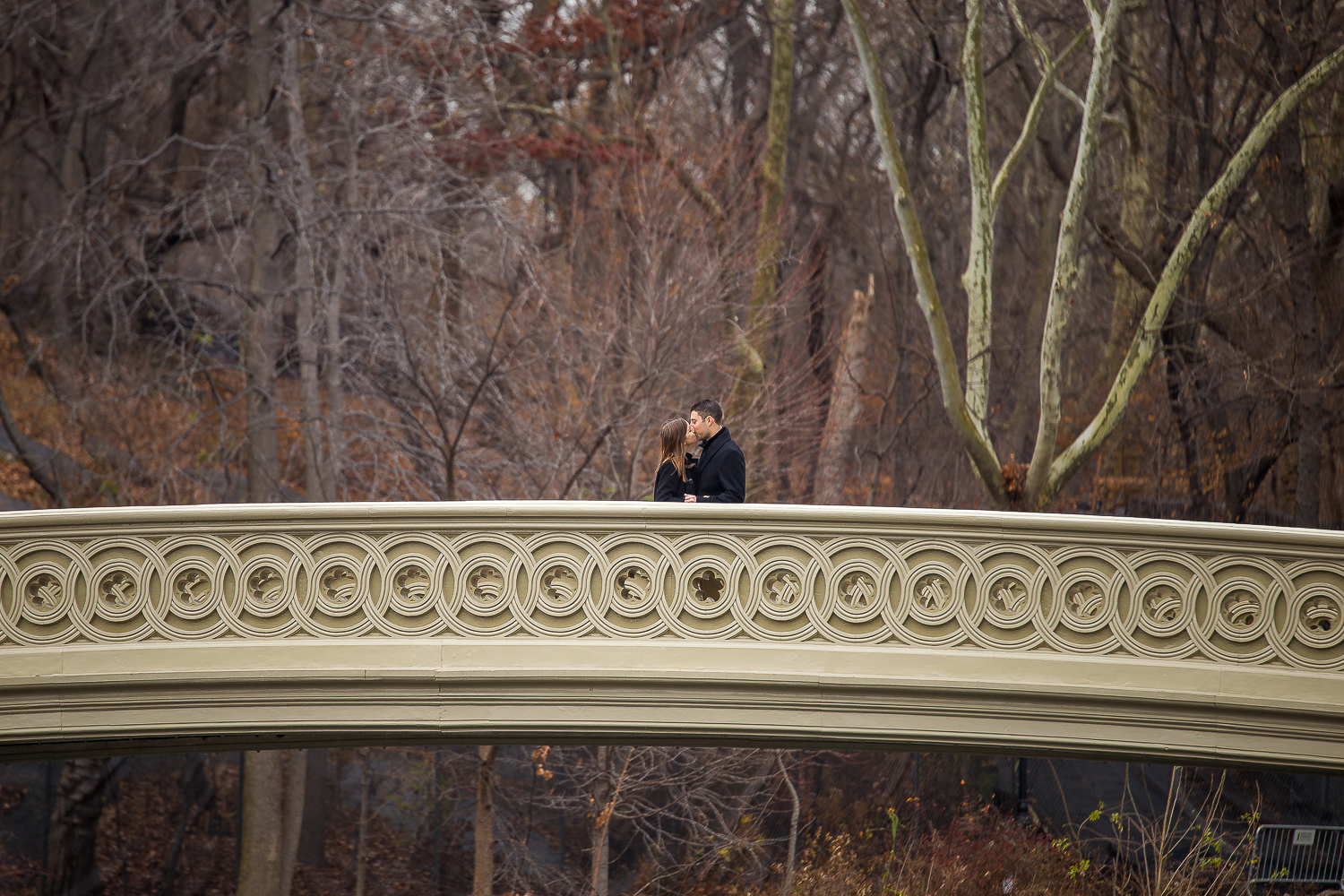 Engagement-photography-central-park-2016-2.jpg