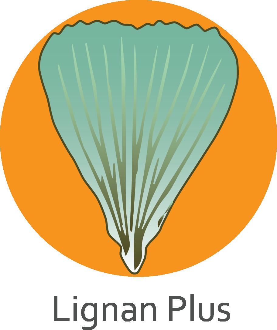 Lignan Plus.png