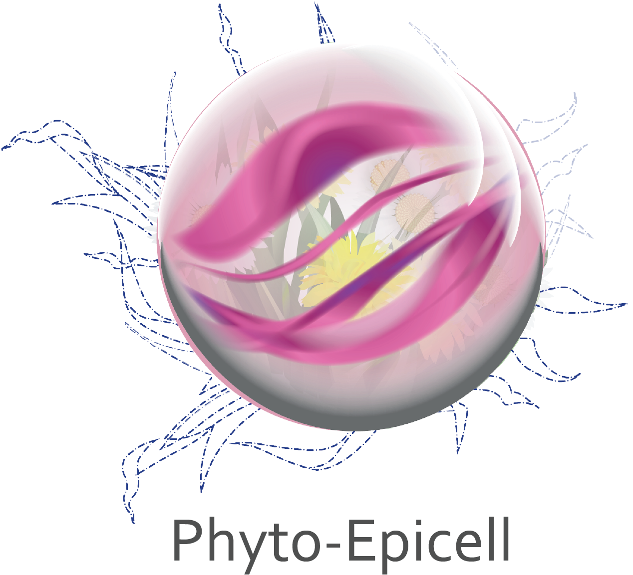Phyto-Epicell.png