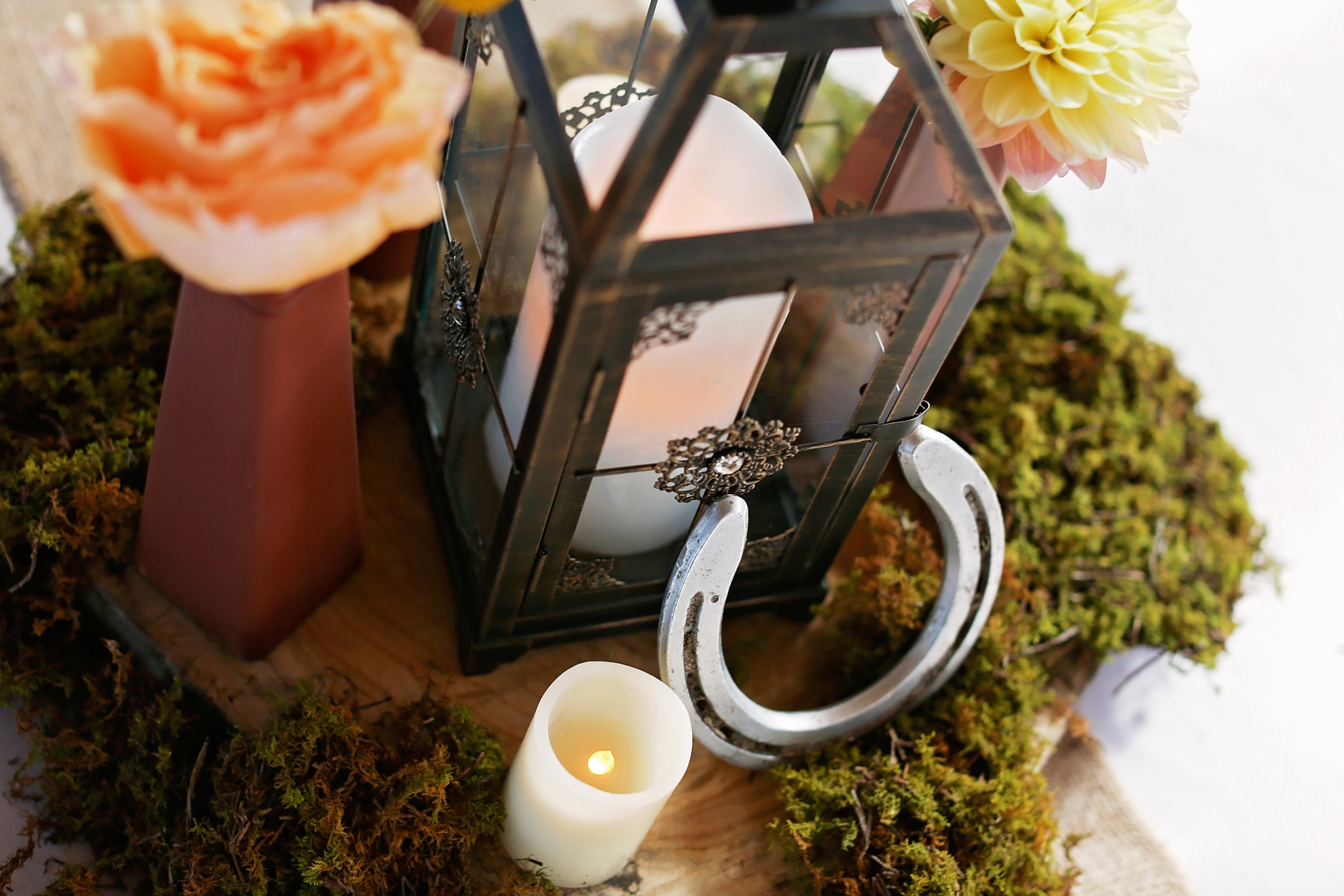 "Horse shoes bring some ""luck"" to the table setting."