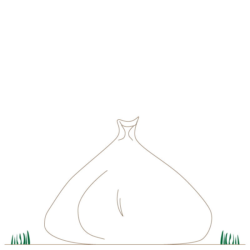 plastic bag.png