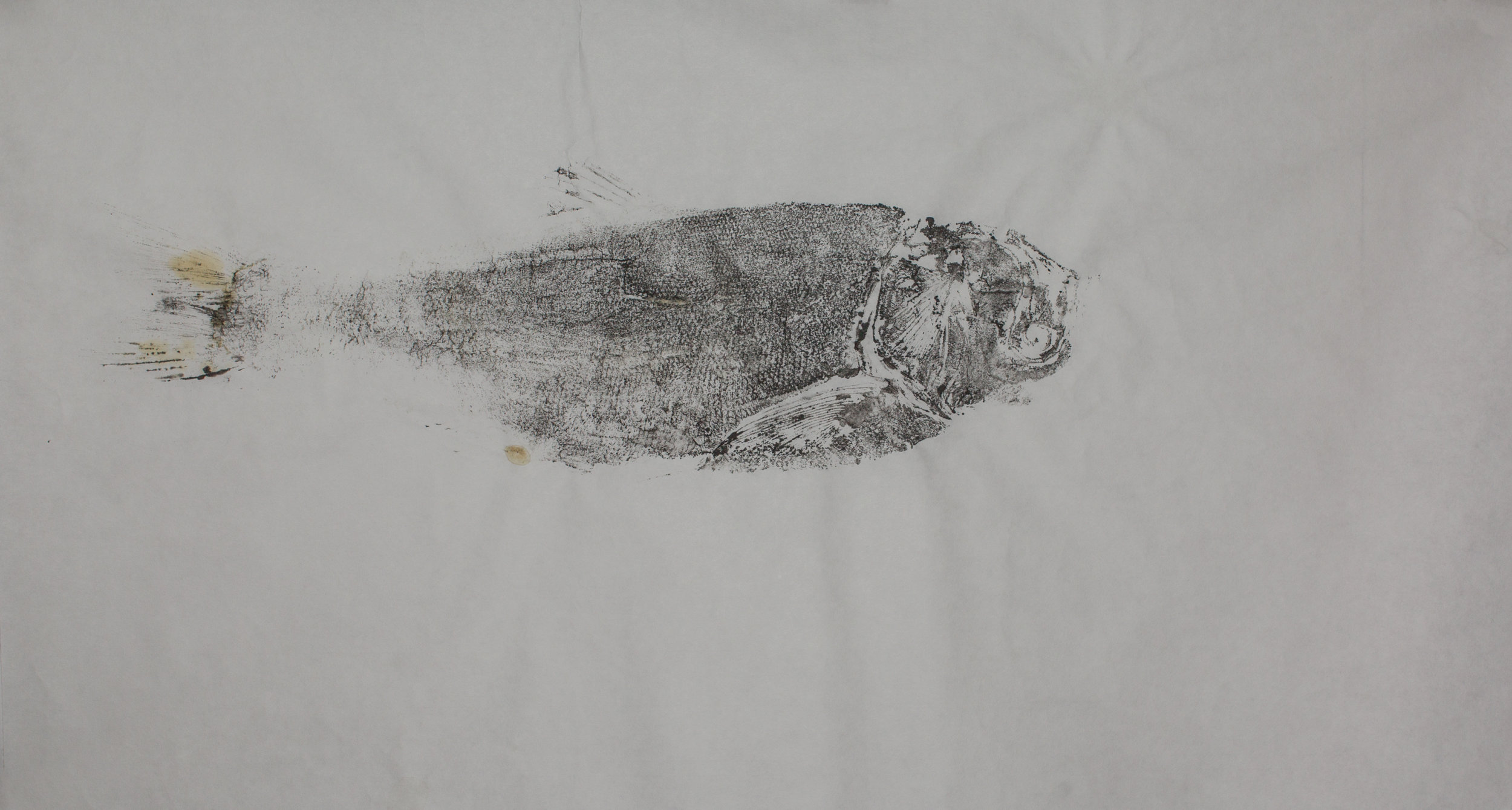 Gyotaku_006.jpg