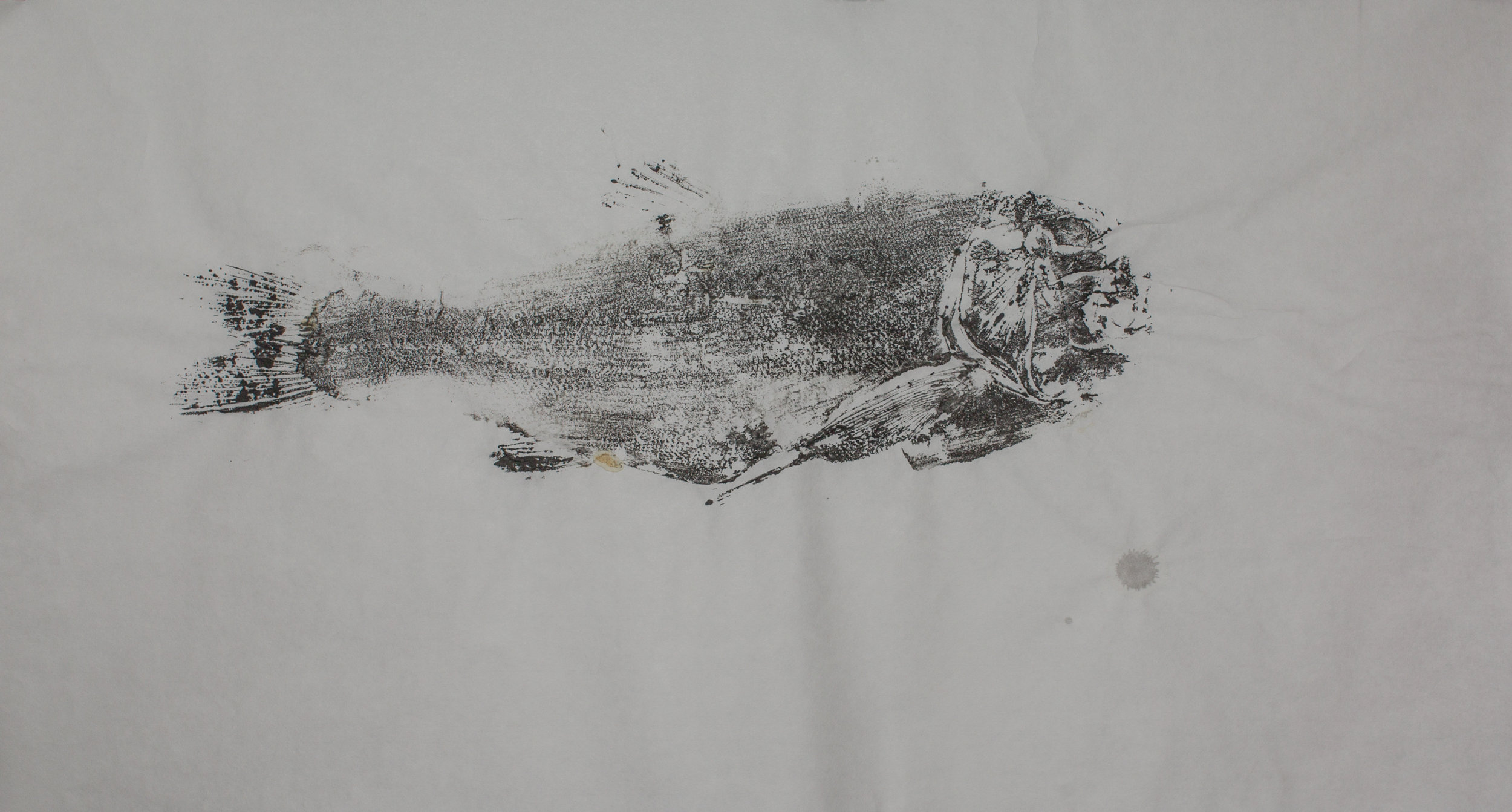Gyotaku_007.jpg