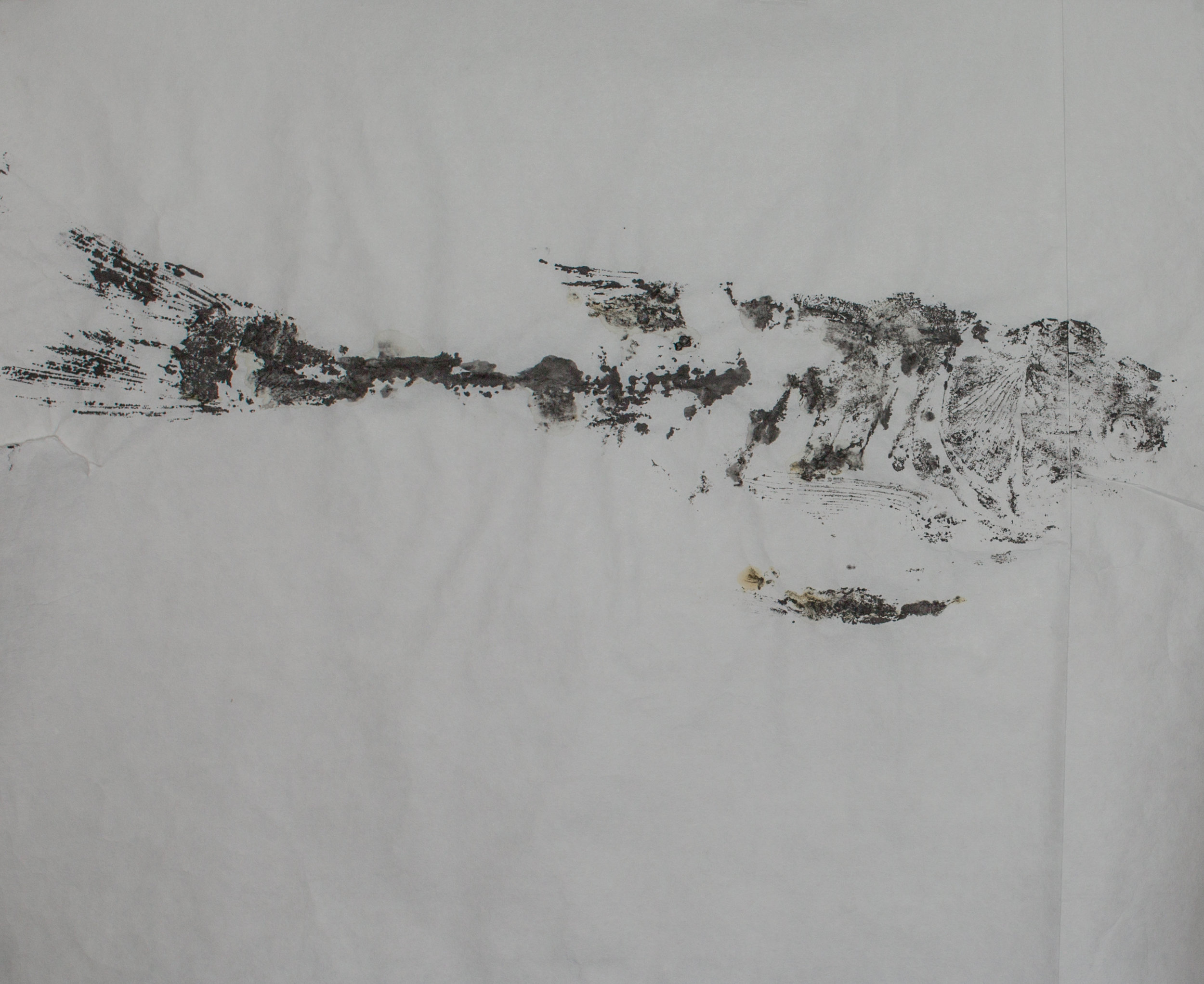 Gyotaku_012.jpg
