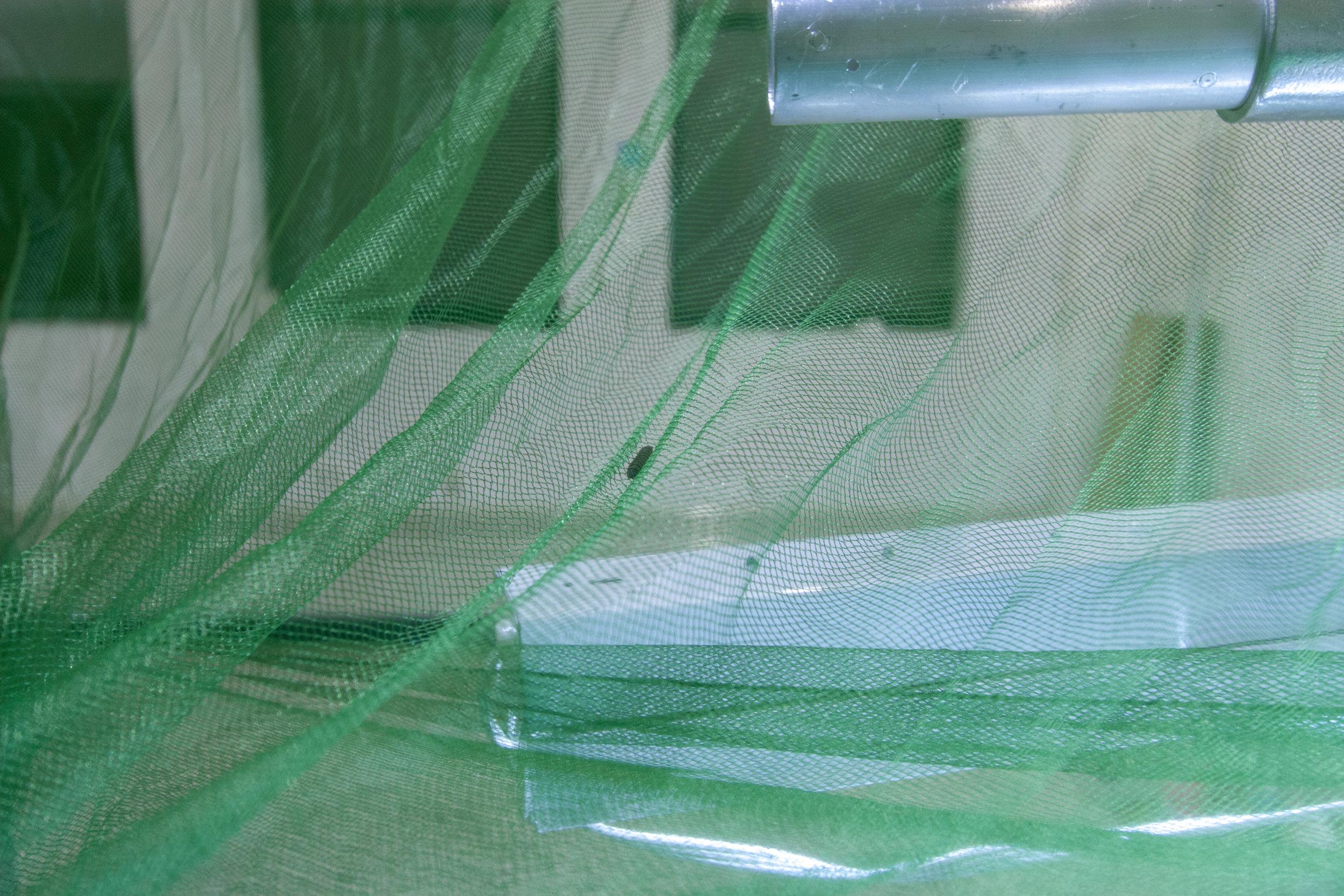 Aquavermiculture_30D_19.jpg