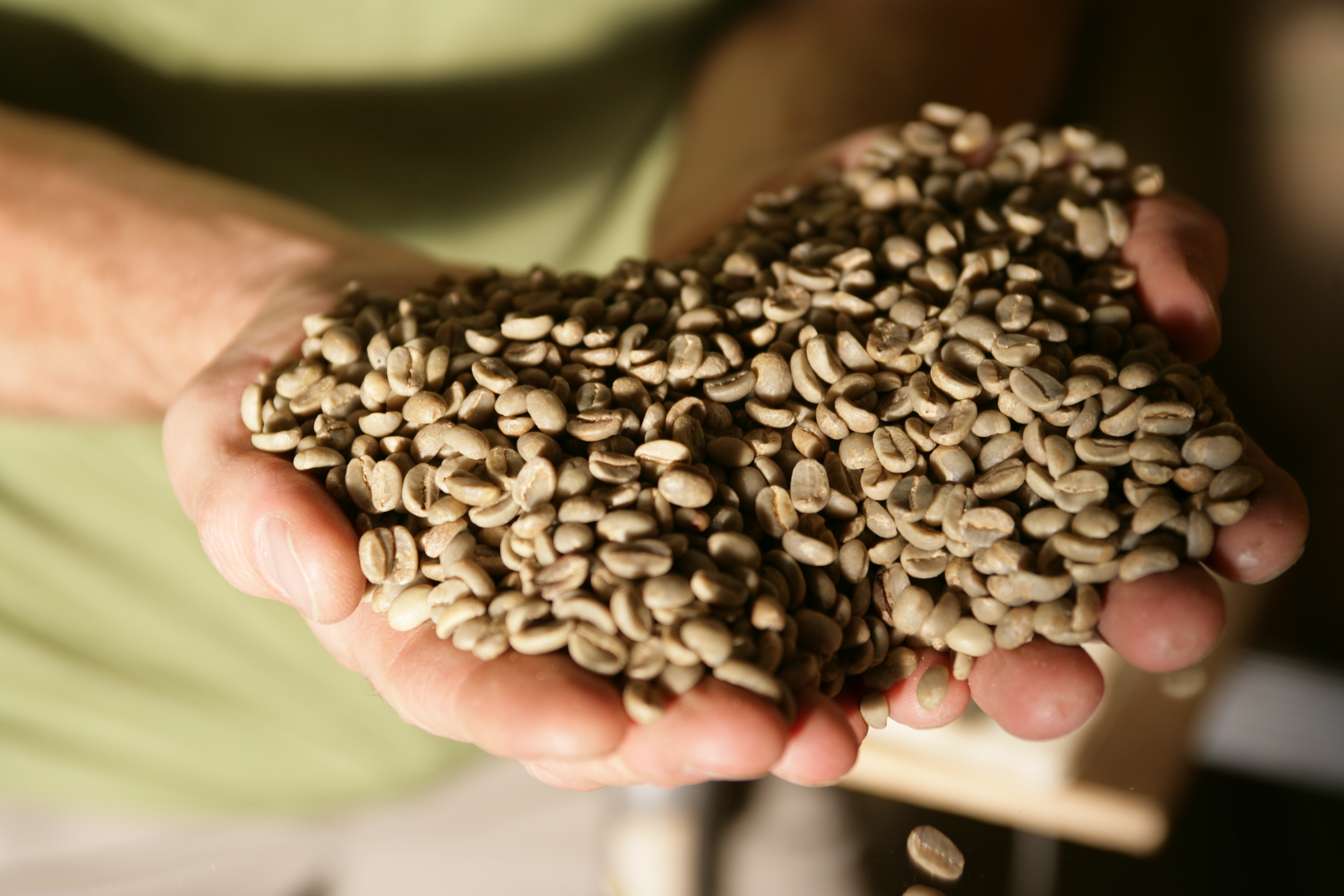 conscious coffees -