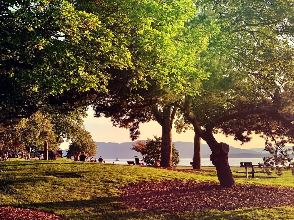 Such a lovely evening walk tonight. Love summer in the Pacific Northwest!