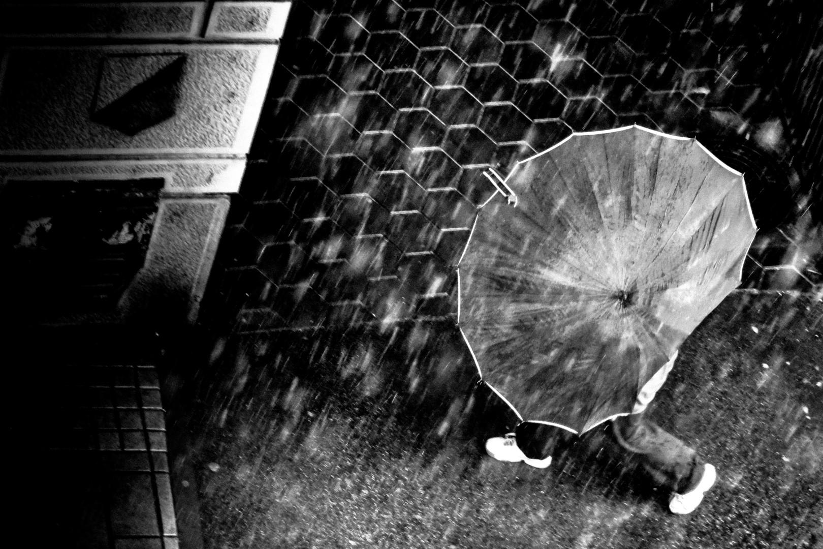 umbrella-shield_25874537073_o (Large).jpg