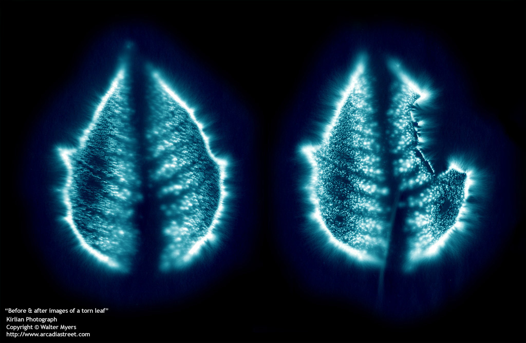Kirlian Photography: A technique for recording photographic images of corona discharges and the auras of living creatures.