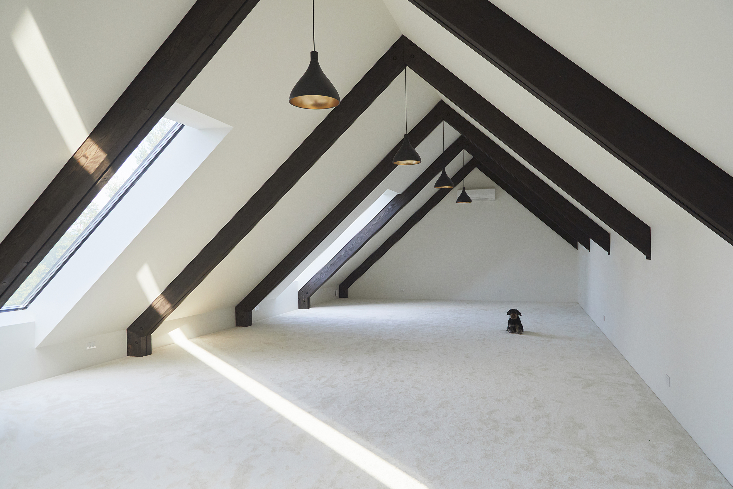 Upstairs the minimalist multi-purpose loft is lit by skylights, aligned perfectly for star-gazing at night