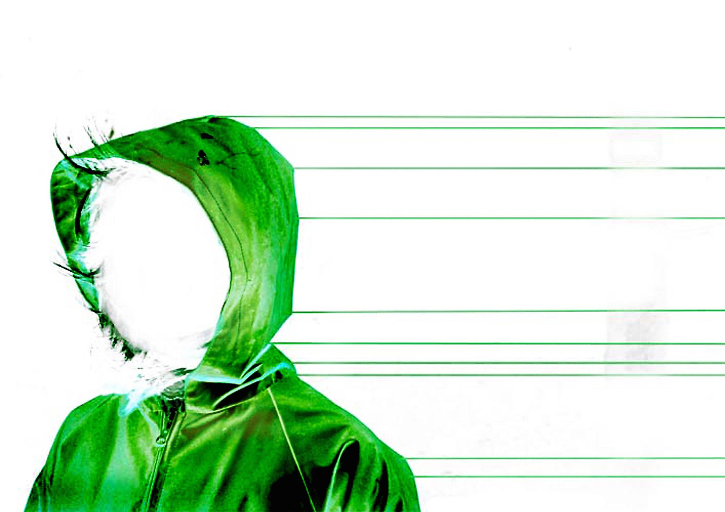 Em Grøn Hætte.jpg