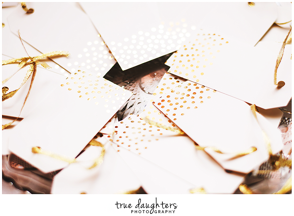 True_Daughters_Photography_Jim_And_Nancy_Wedding_Renewal-0203.png
