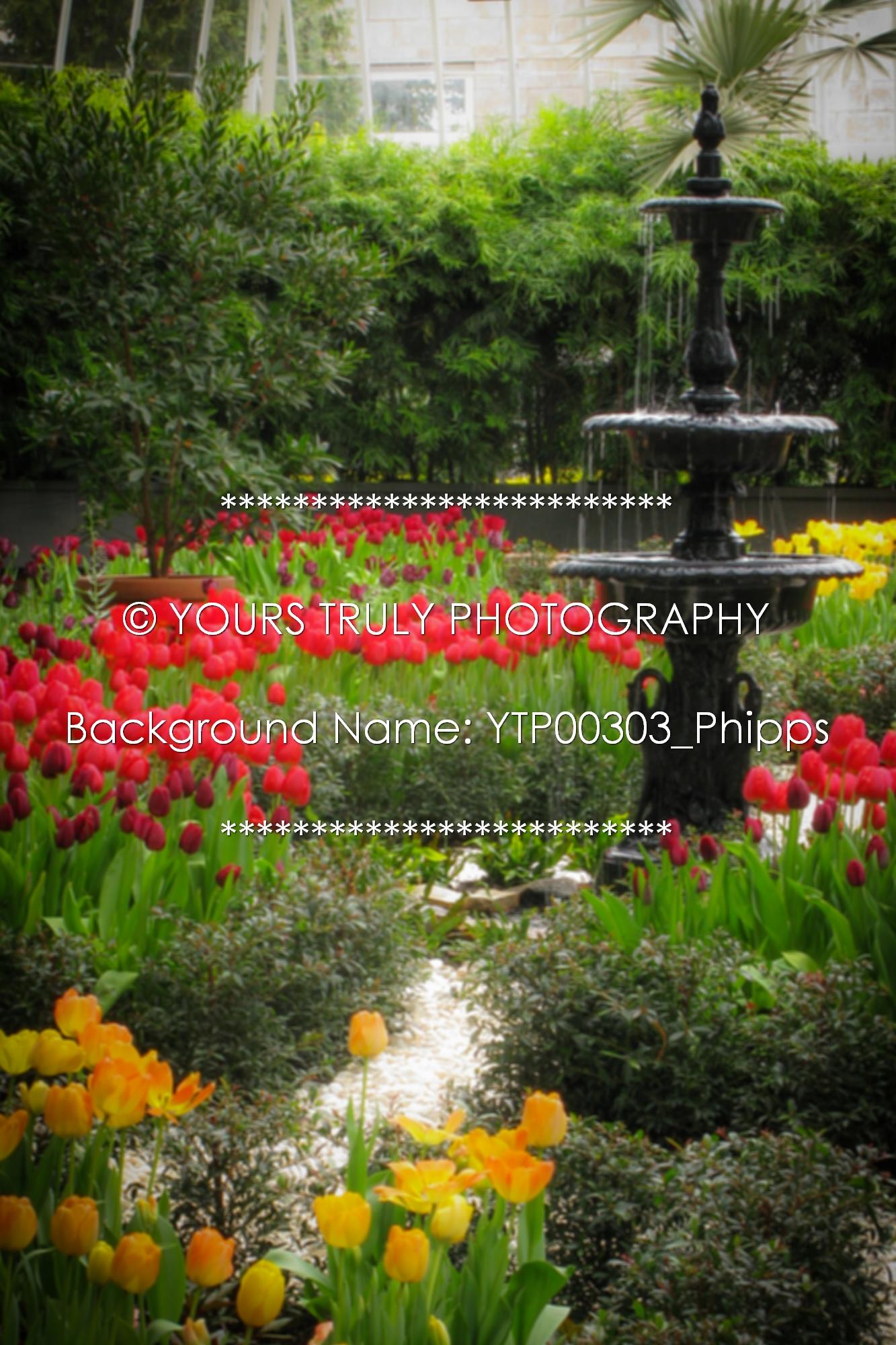 YTP00303_Phipps.jpg