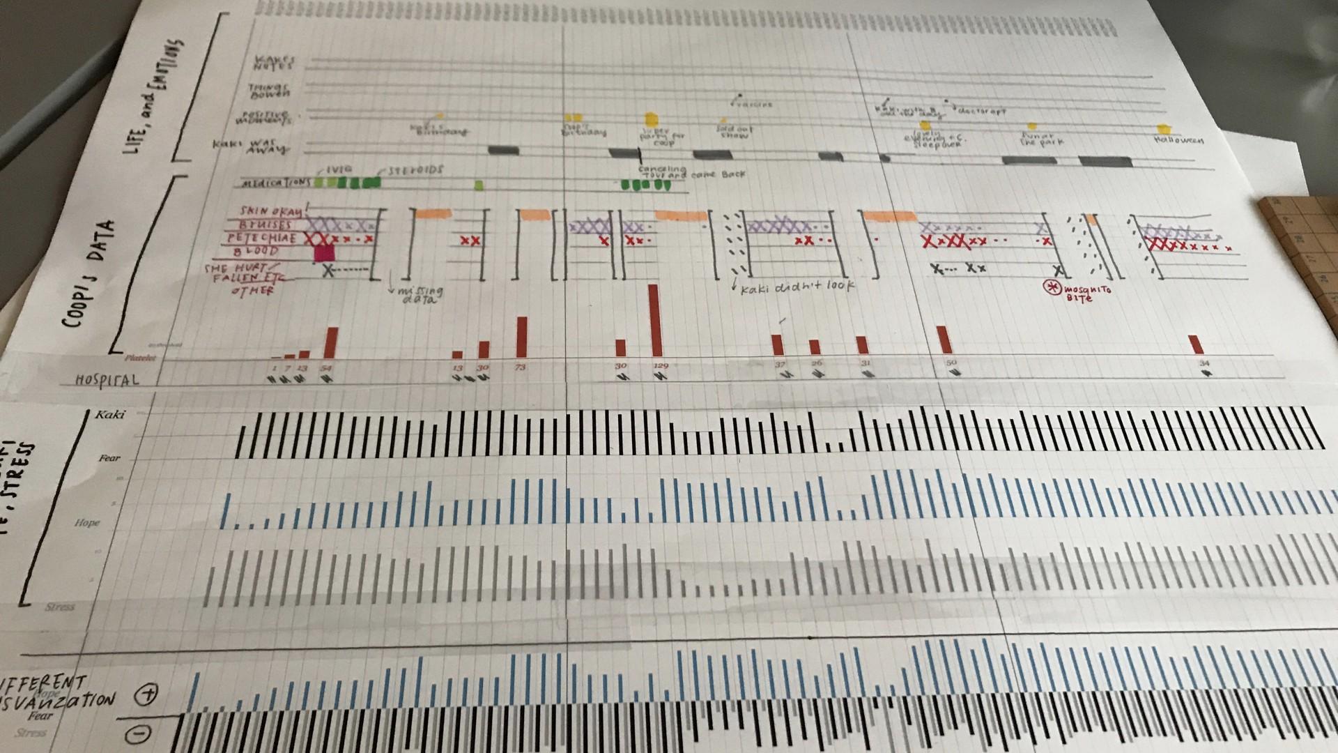 My working sheet as interpreting Kaki's data collection