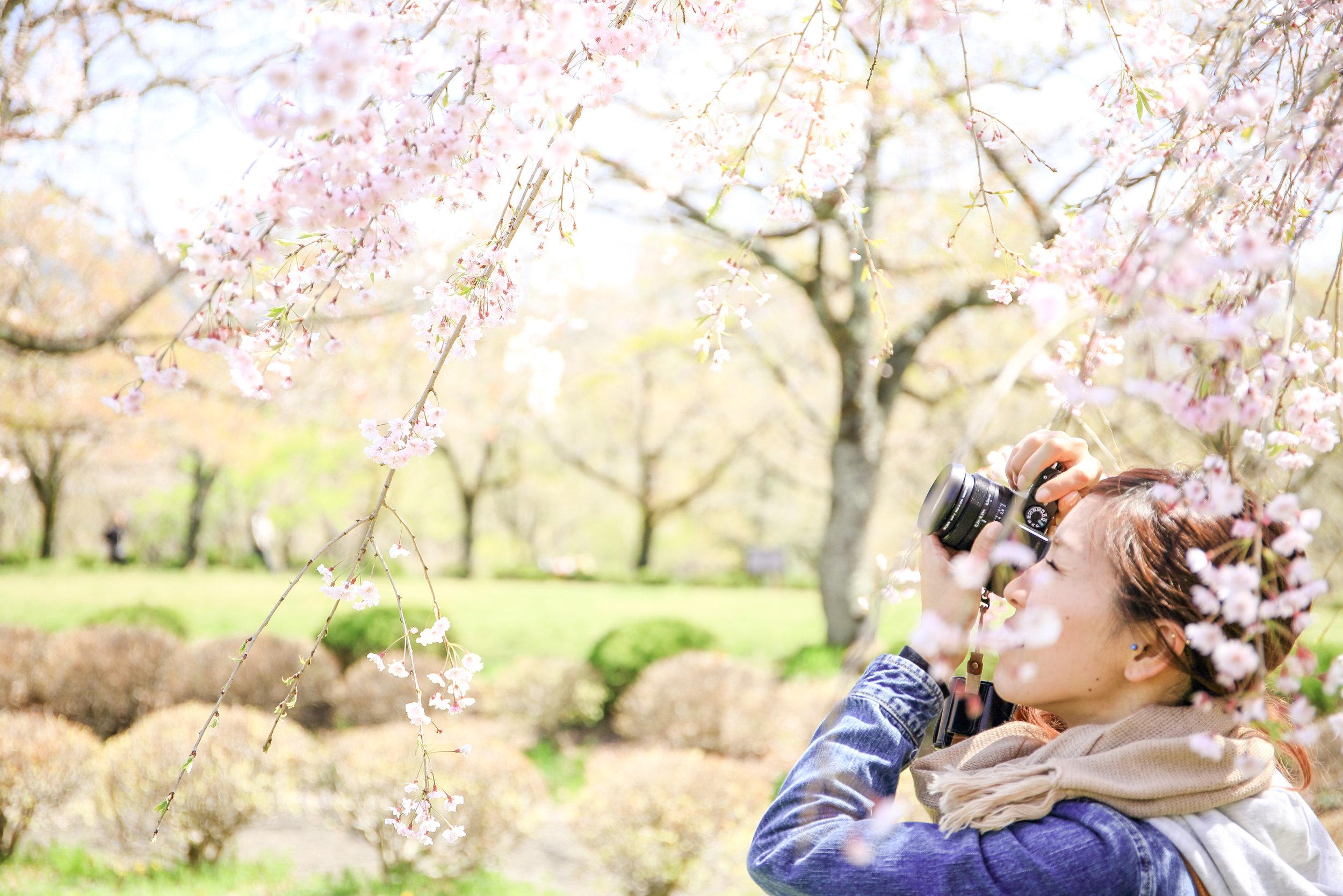 spring after-5.jpg