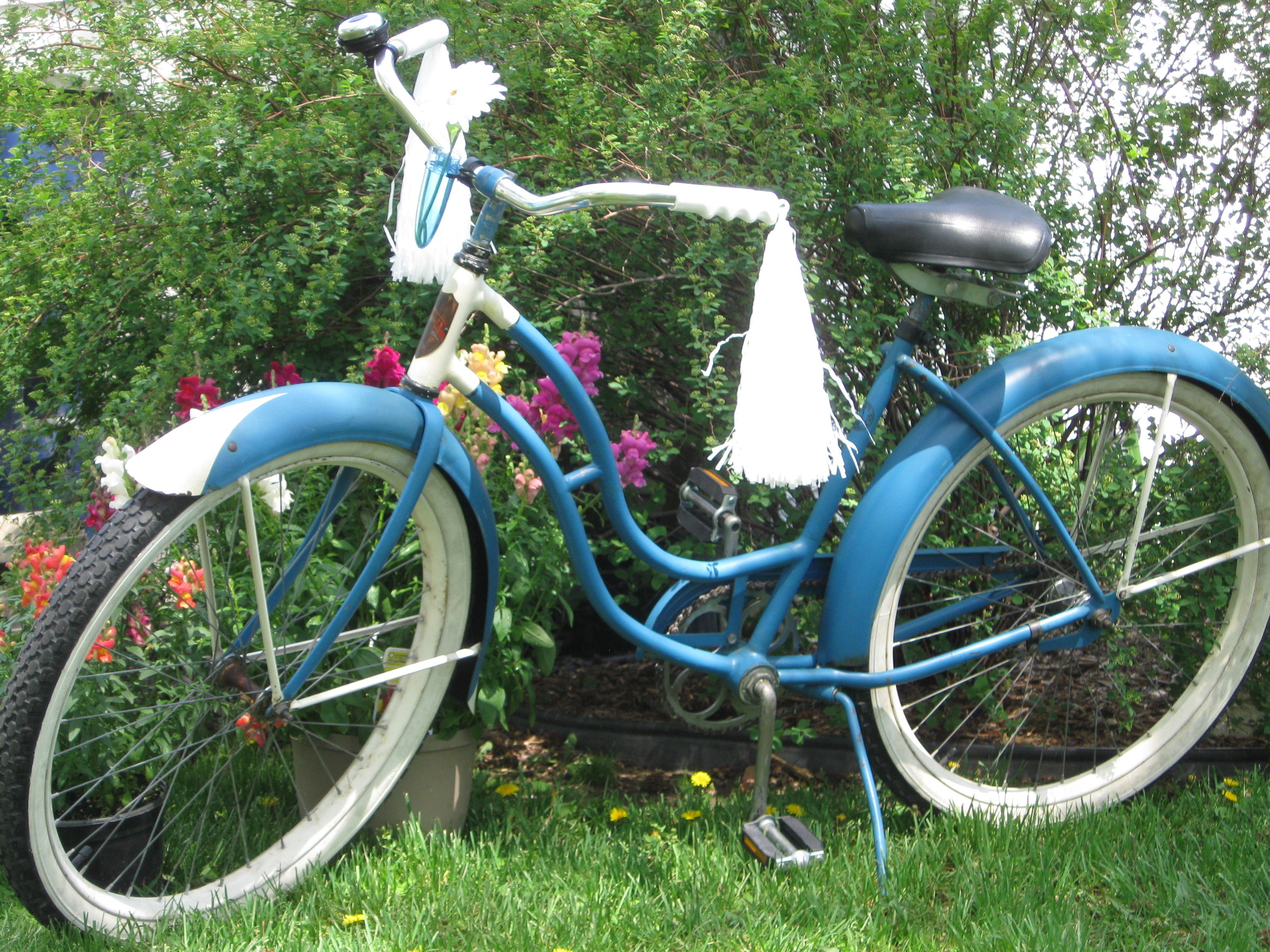 1953 Schwinn after the clean and restoration.