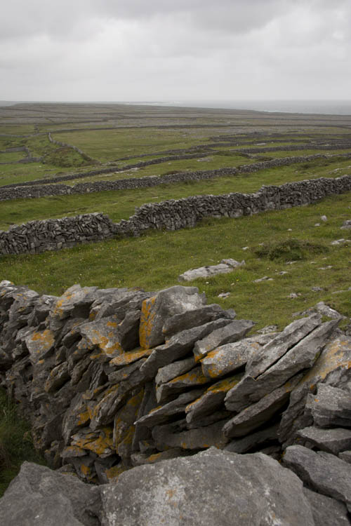 Stone walls as far as the eye could see