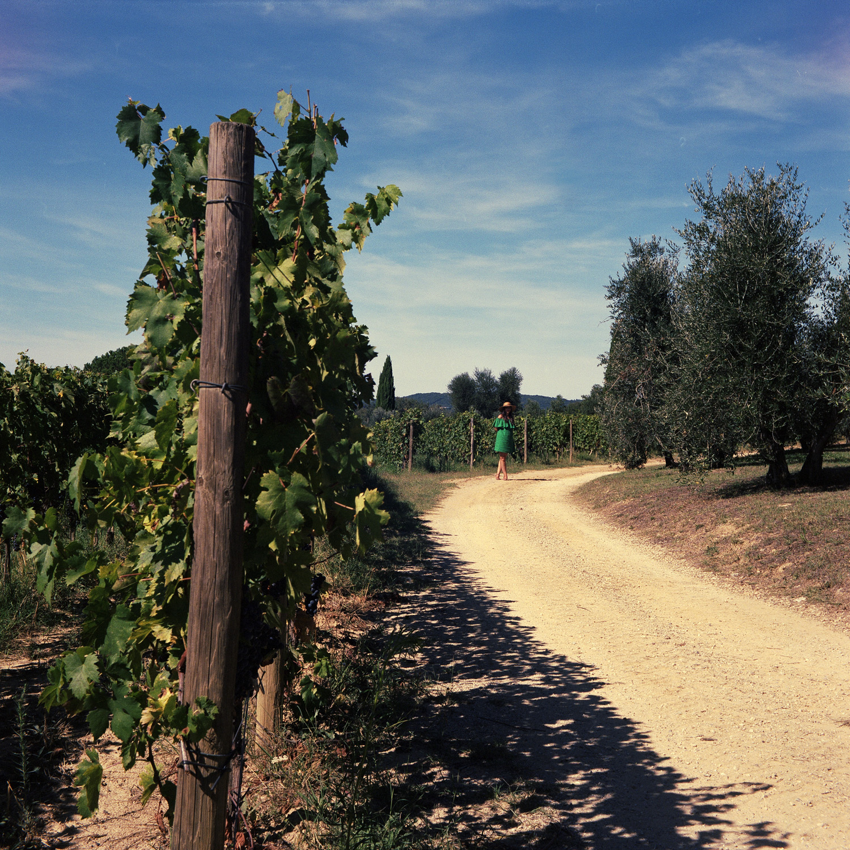 Stefanos Metaxas Mate winery.jpg
