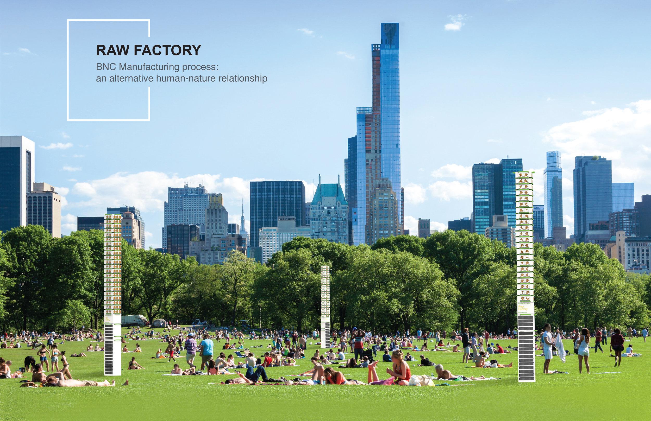 Raw Factory 1.jpg