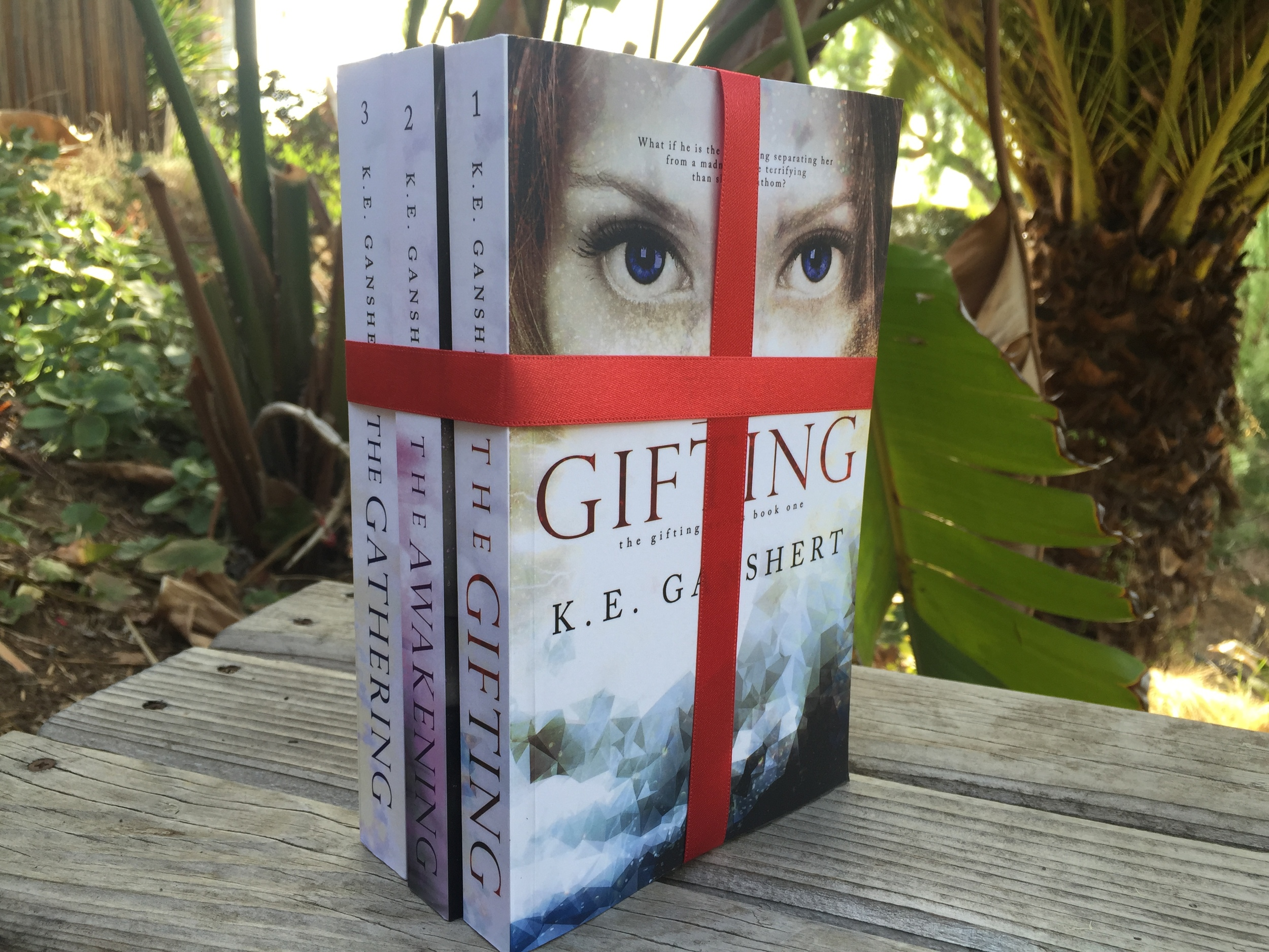 You can pretend like you'll gift this trilogy to your niece or bff's teenage daughter, but don't be fooled!  K.E. Ganshert  will keep you up all night reading by the light of your phone flashlight in this page turning, heart pounding, dystopian trilogy. YA Lit at its finest, you're going to love the characters and Ganshert's gift for weaving a tale! Its also signed by the author herself! Special shout out to K.E. Ganshert for this donation!