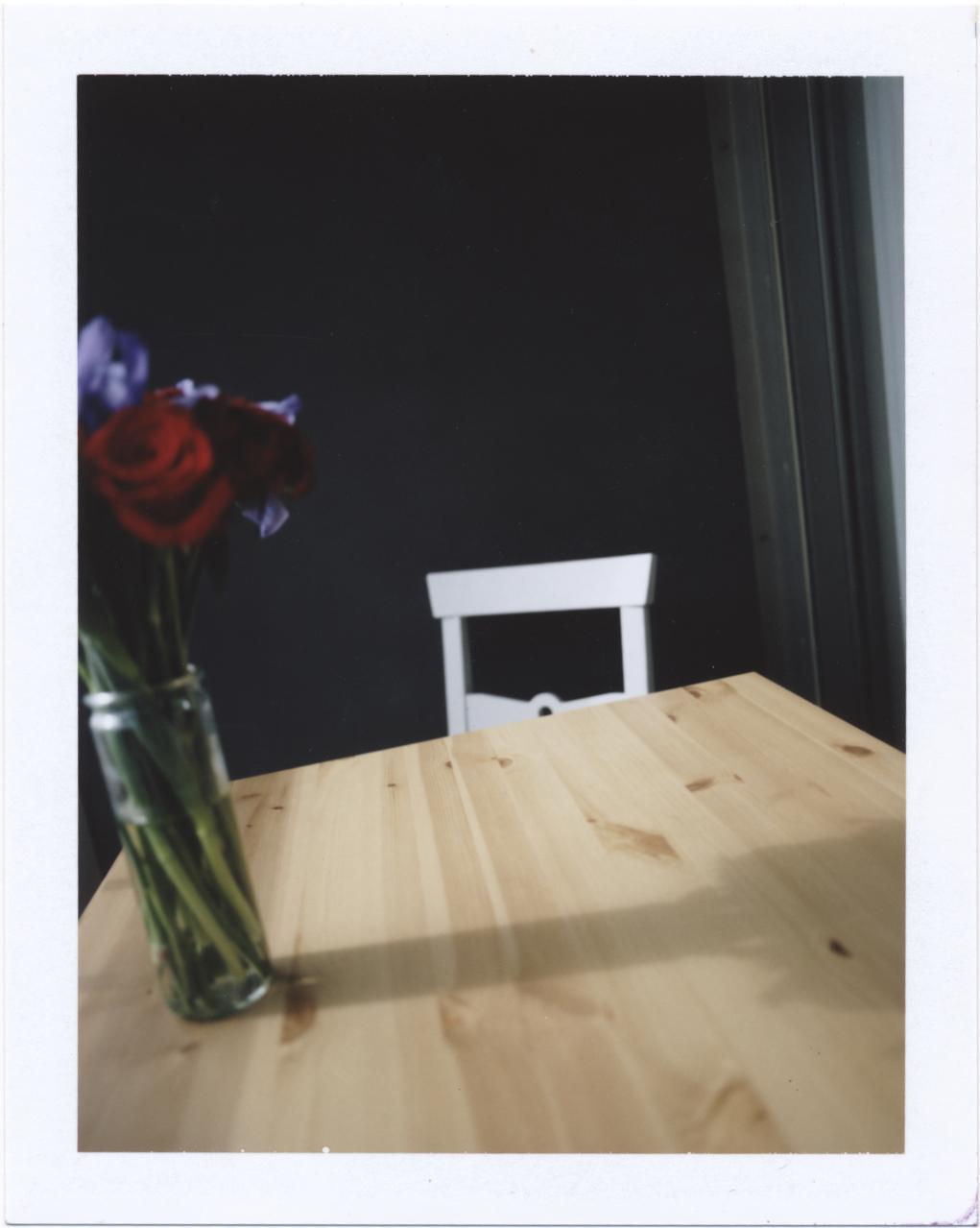 Te dejé flores (2016)                        Instant film