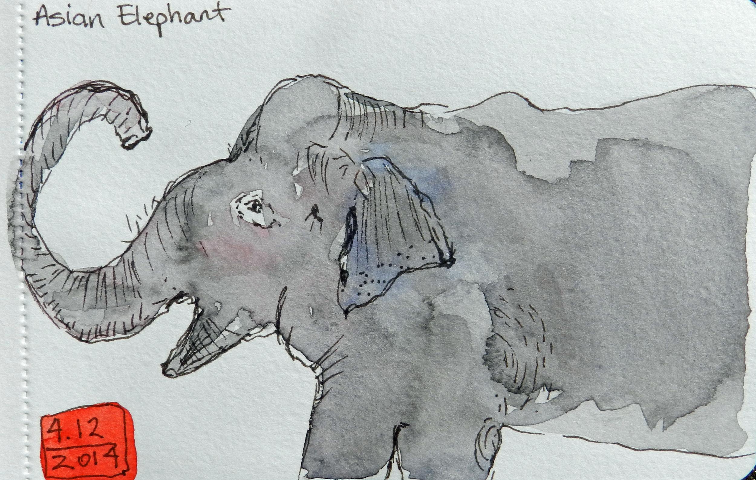 Sketchbook Skool (7)