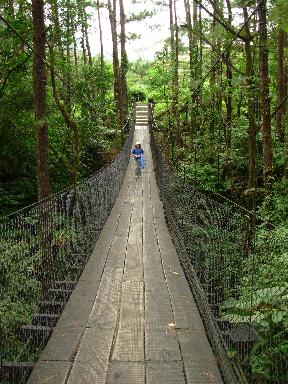 hanging bridge at Arenal Observatory Lodge