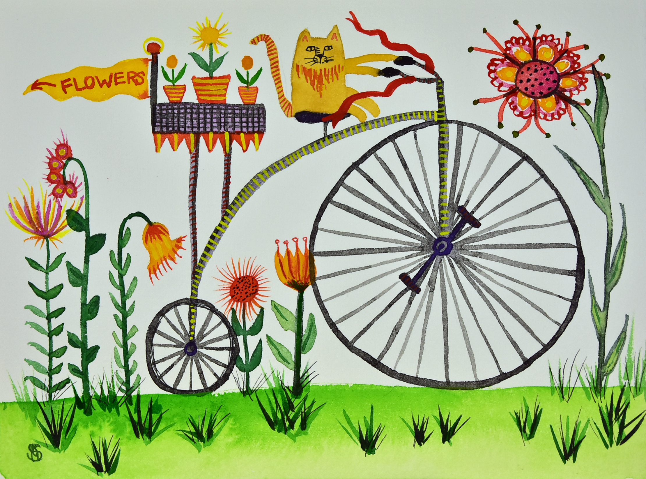 Cat on a Bicycle