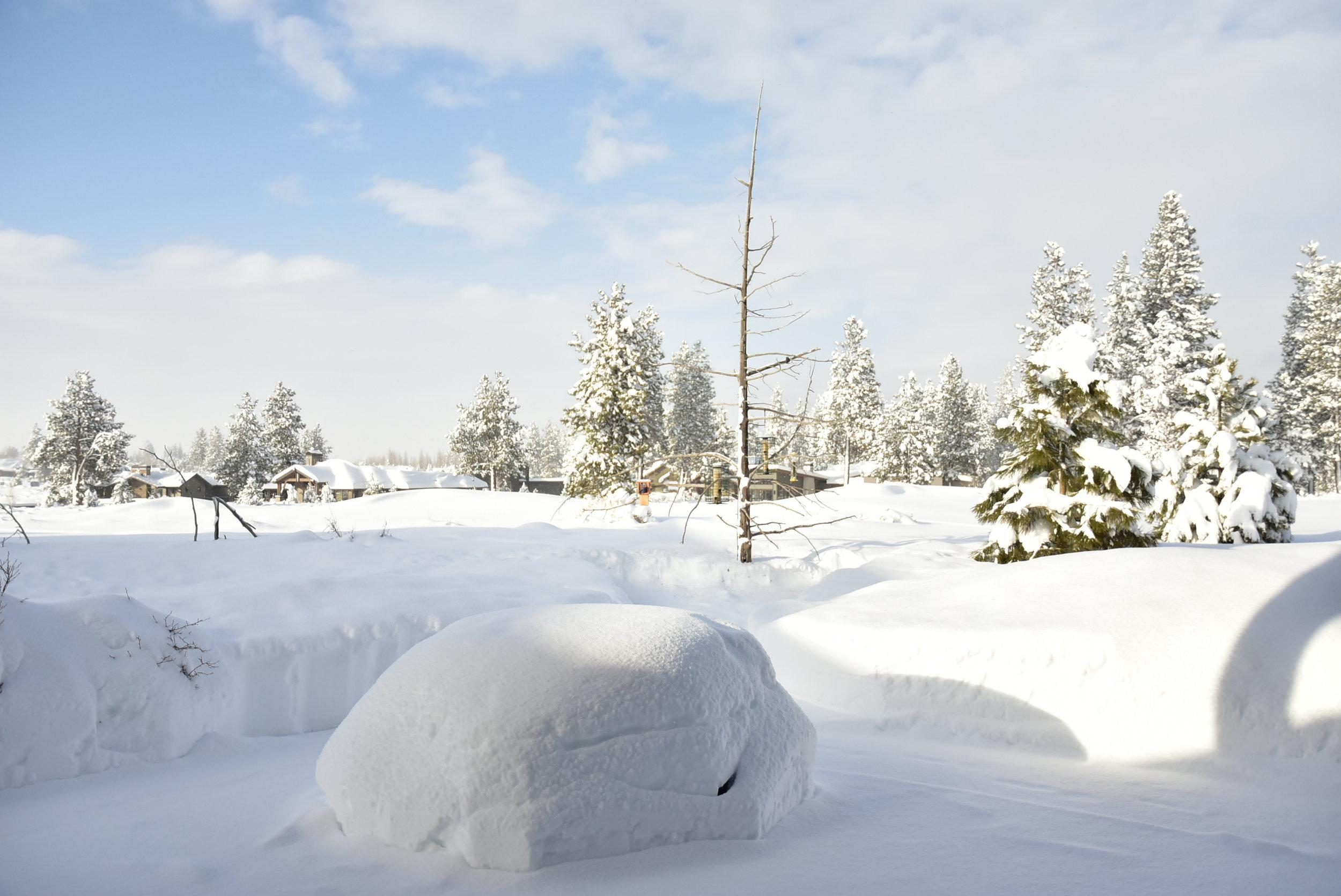 2019 Big Snow (27).JPG