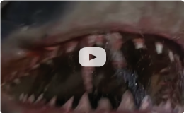Jaws Rescored by Hans Zimmer