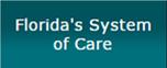 Sednet-Nav-Floridas-System-of-Care.jpg