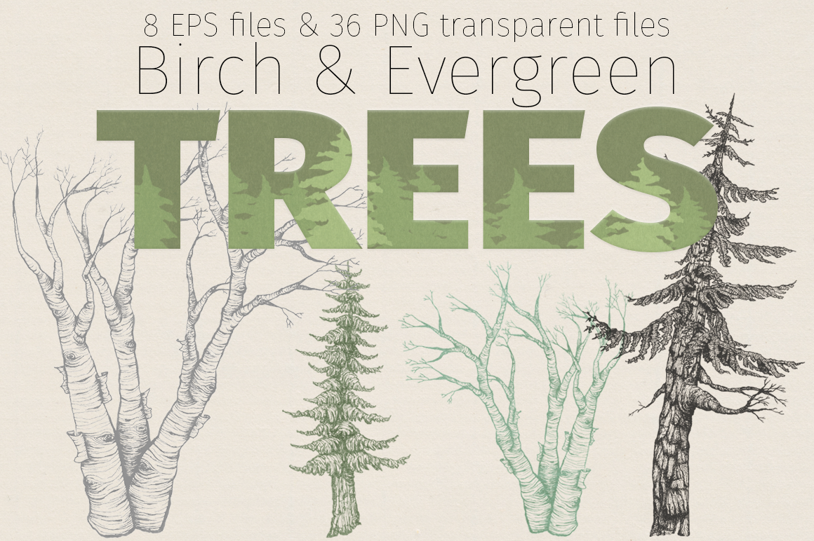36 PNG & 8 EPS tree illustrations