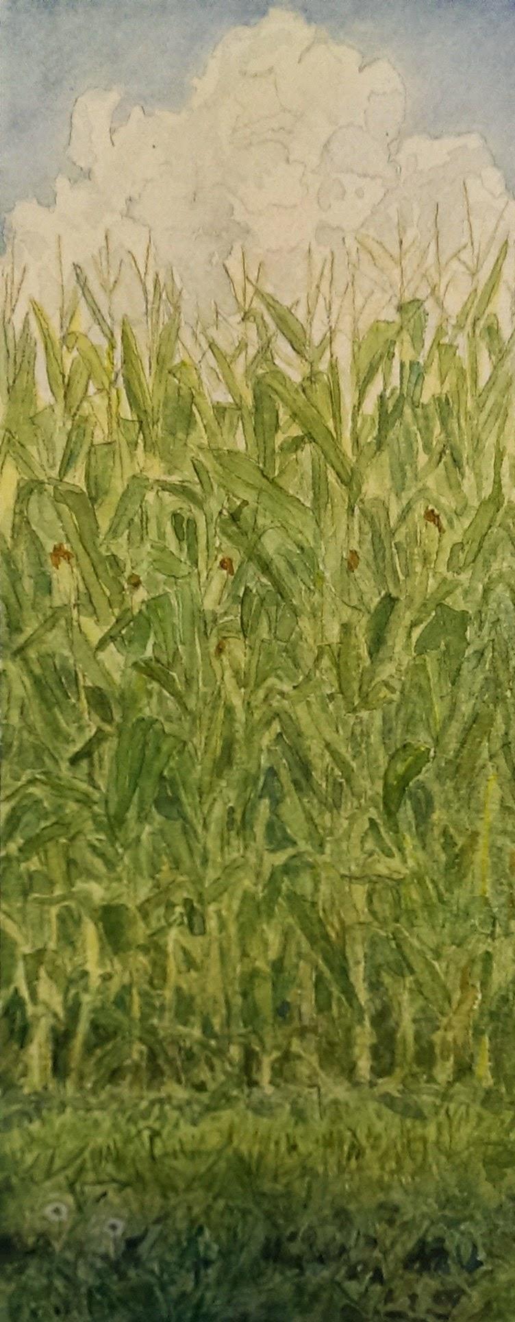 Corn Wall